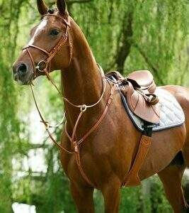 Breastplates and Martingales - SALE