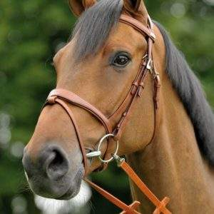 Stubben Passion 1800 Bridle - SALE