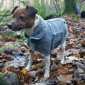 Henry Wag Drying Coat