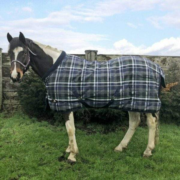Whitaker 200g Stable Rug