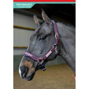 John Whitaker Airflow Head Collar Set - SALE