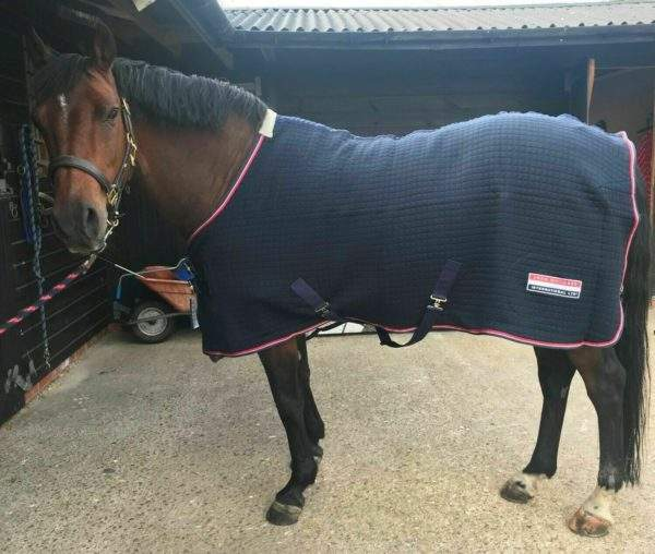 John Whitaker London Heavy Weight Thermolex Stable/Travel Rug - SALE