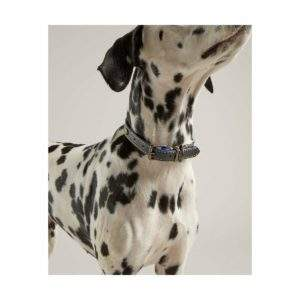 Joules Leather Dog Collar