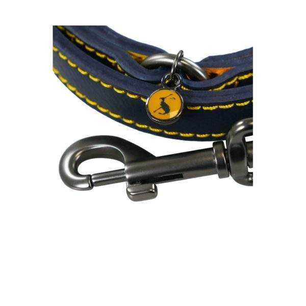 Joules Leather Dog Lead