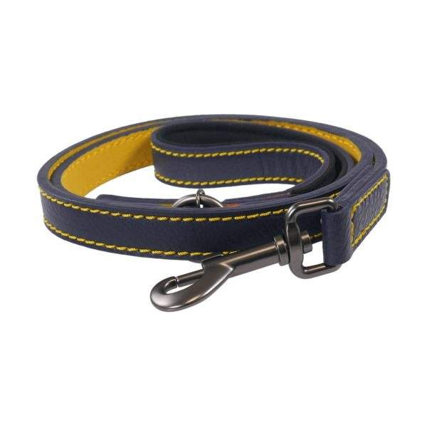 Joules Leather Dog Lead - SALE