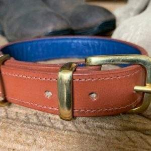 Elite Leather Lined Dog Collar / Leather Lined Lead