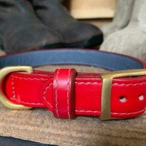 Elite Leather Lined Dog Collar / Leather Lined Dog Lead
