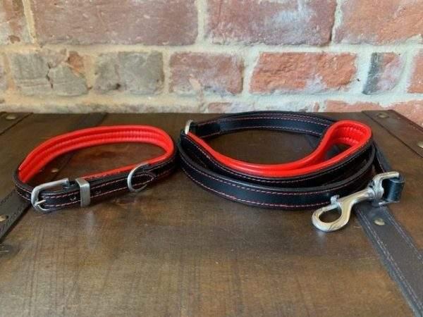 Elite Premium Padded Dog Collar / Stitched Lead