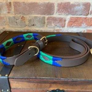 Elite Premium Polo Collar and Lead