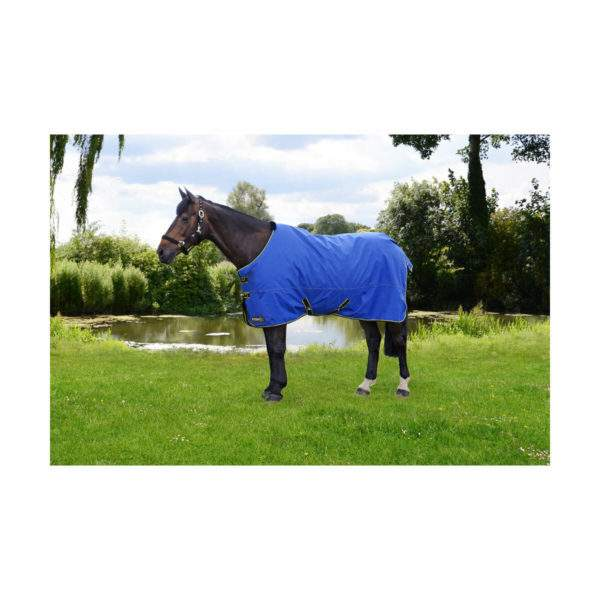 Hy StormX Original 100g Turnout Rug