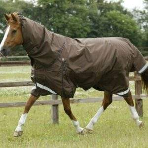 Premier Equine Turnout Rugs and Neck Covers