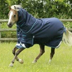 Premier Equine Pony Turnout Rugs and Neck Covers