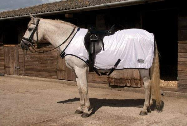 Rhinegold Ride-On Mesh Fly Rug