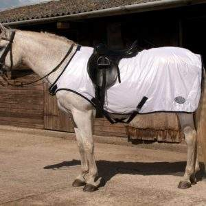 Rhinegold Ride-On Fly Rug - SALE