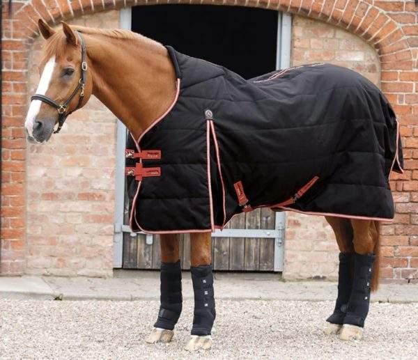 Premier Equine Lucanta Demi Stable 200g