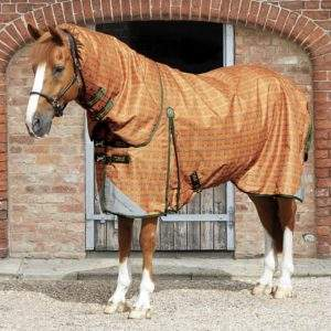 Premier Equine Tybalt Stratus 200g Turnout Rug with Neck Cover