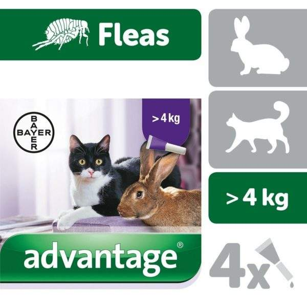 Advantage 40 Spot-On for Large Cats & Rabbits