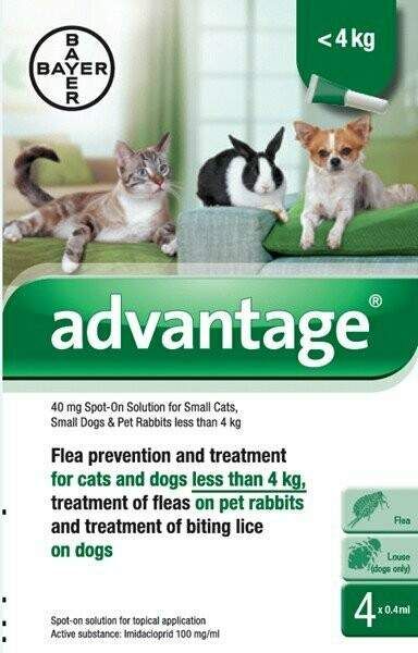 Advantage 40 Spot-On for small cats, dogs and rabbits