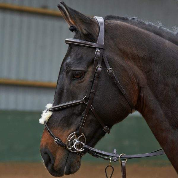 Whitaker Eastwood Mexican Bridle