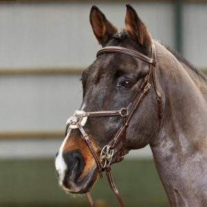 Whitaker Valencia Super Deluxe Mexican Bridle