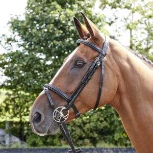 Whitaker Barton Raised Flash Bridle, including rubber reins.