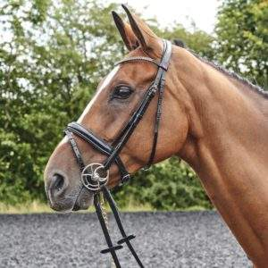 Whitaker Barton Bling Flash Bridle, including rubber reins.