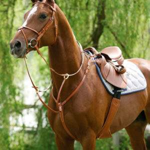 Stubben Breastplate with running attachment - SALE