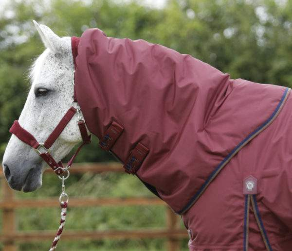 Premier Equine Buster 400g Turnout Rug with Neck Cover - SALE