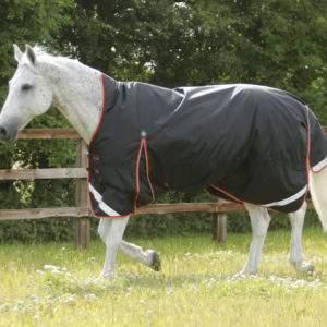 Premier Equine Buster Hardy 100g Half Neck Turnout Rug