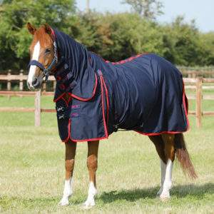 Premier Equine Combo Horse Stable Sheet