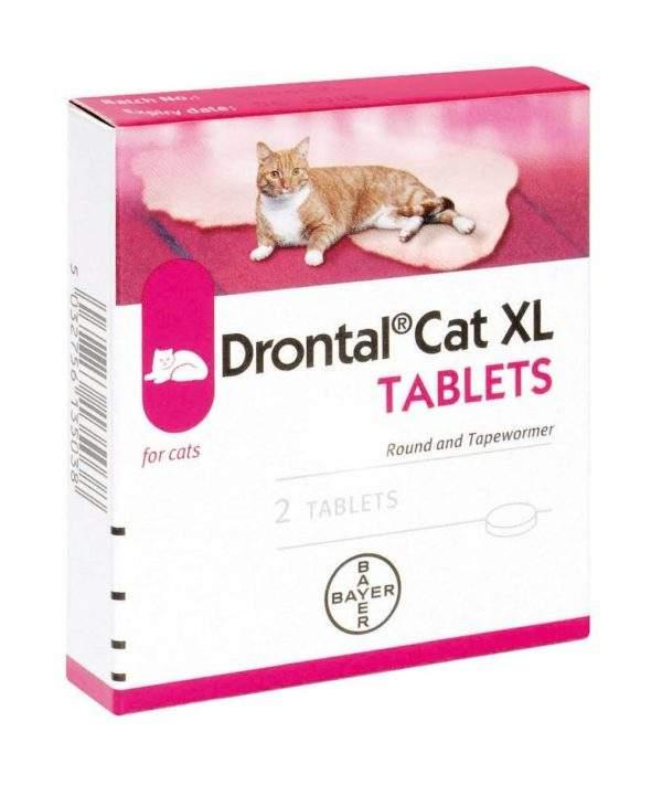 Drontal Cat XL Ellipsoid Tablets