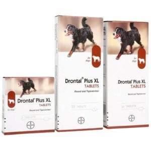 Drontal Plus XL Flavoured Tablets