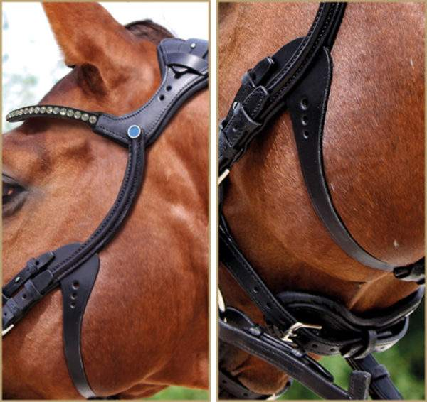 Stubben Freedom 2510 Magic Tack Bridle (Trial available)
