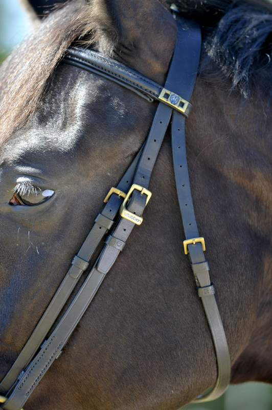 Stubben Imperial 1191 Bridle - SALE