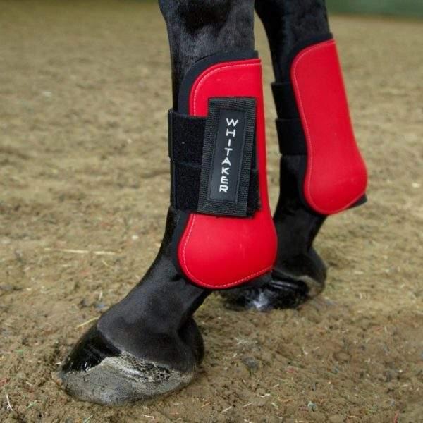 Whitaker Skipton Tendon and Fetlock Boots