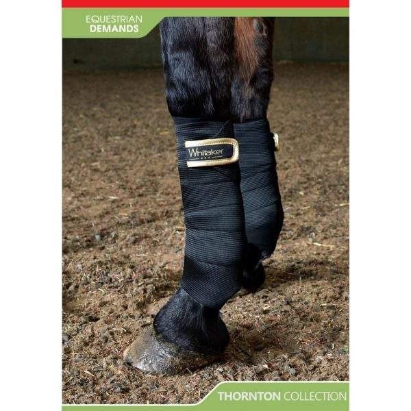 Whitaker Thornton Elastic Bandages