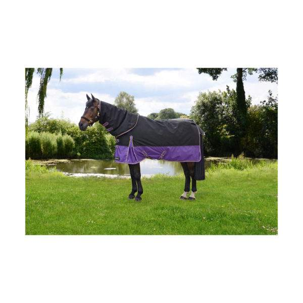 Hy StormX Original 200g Turnout Rug with Detachable Neck Cover