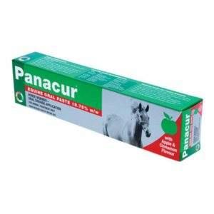 Panacur Equine Paste