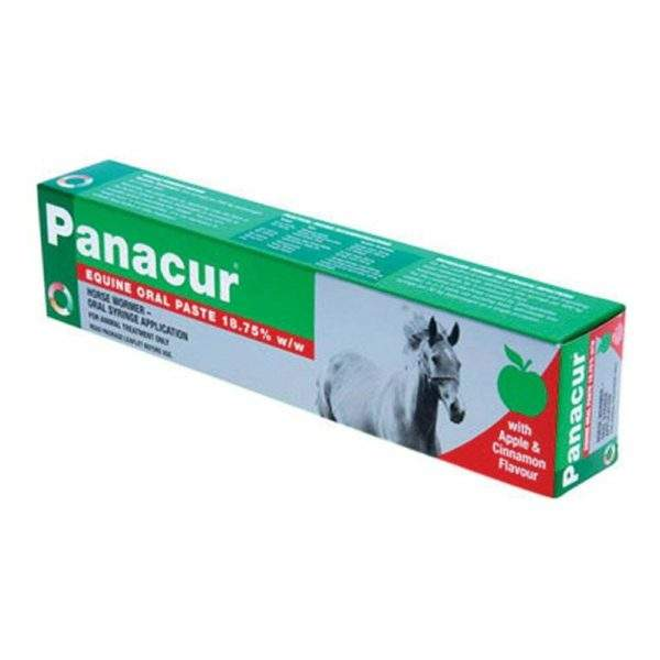 Panacur Equine Paste