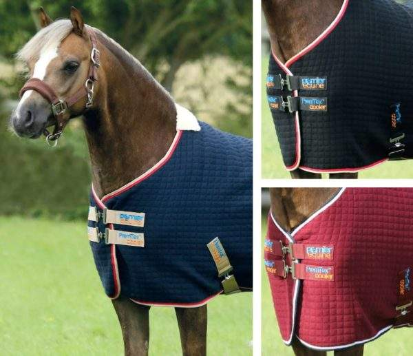 Premier Equine PremTex Pony Cooler Rug