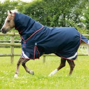 Premier Equine Pony Titan 100g Turnout Rug with Neck Cover
