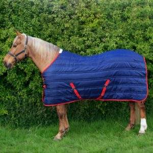 Whitaker R136B Thomas Stable Rug 250G