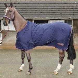 John Whitaker Rastrick Multi-purpose rug
