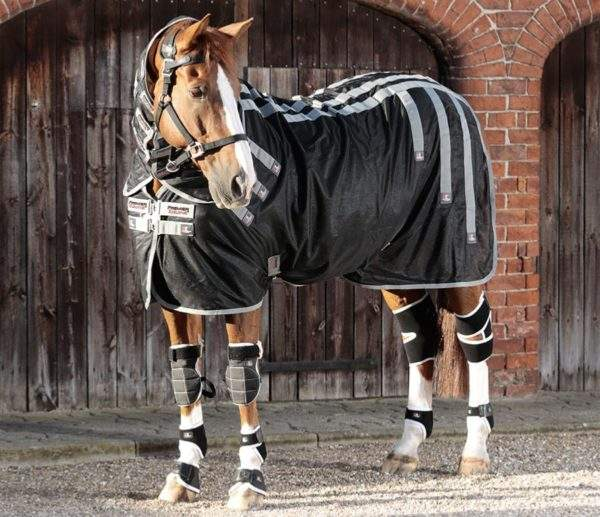 Premier Equine Magni-Teque Magnetic Horse Rug with Neck Cover - SALE