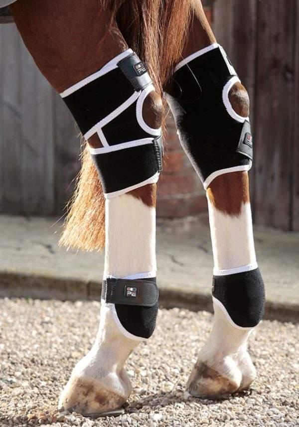 Premier Equine Magni-Teque Magnetic Hock Boots