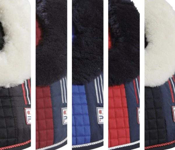 Premier Equine Sports Wool European GP/Jump Square