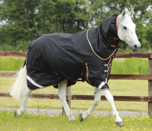 Premier Equine Titan 300g Turnout Rug with Neck Cover