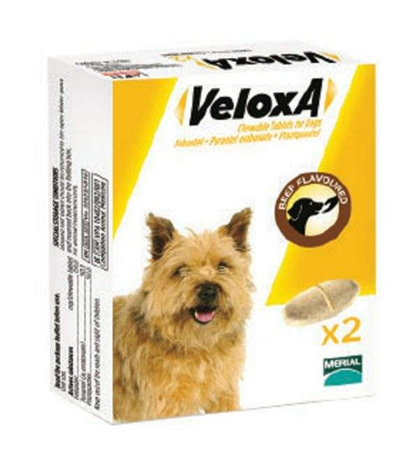 Veloxa Chewable Tablets