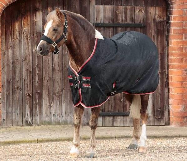 Premier Equine Buster Waffle Pony Cooler Rug