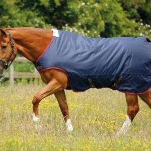 Premier Equine Horse Walker Rug 200g